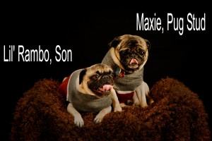 Lil' Rambo and Maxie, Son and Father